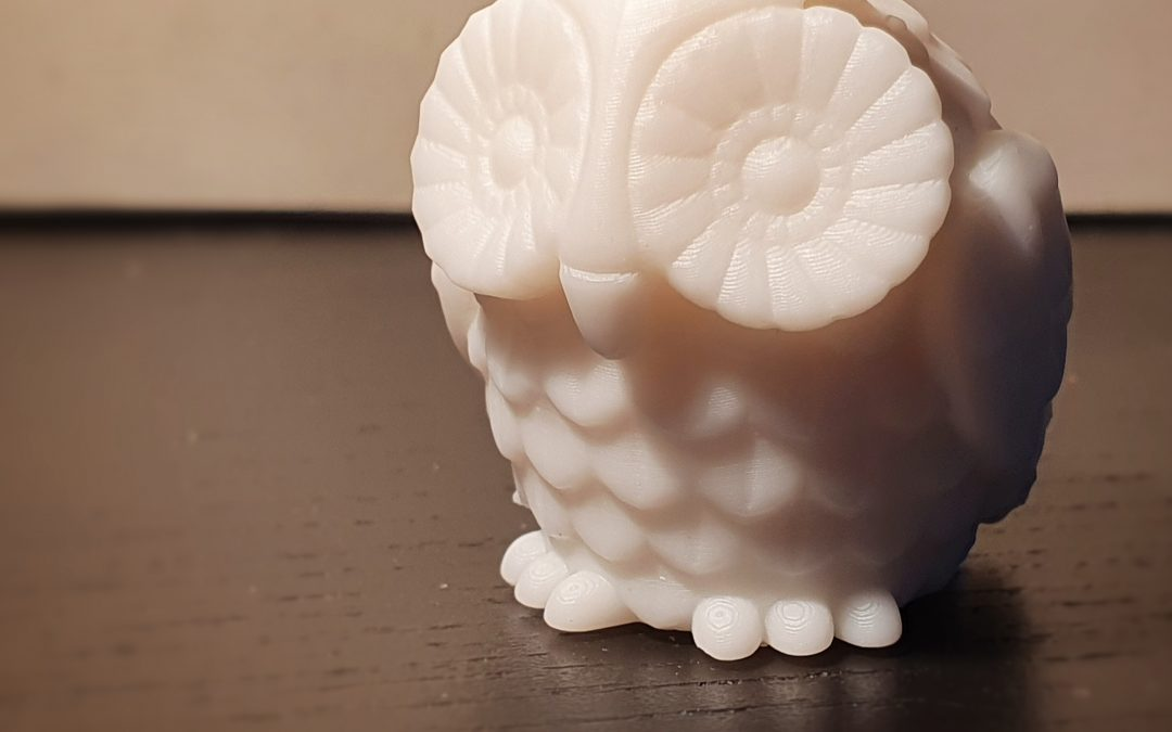Print of owl model on table.