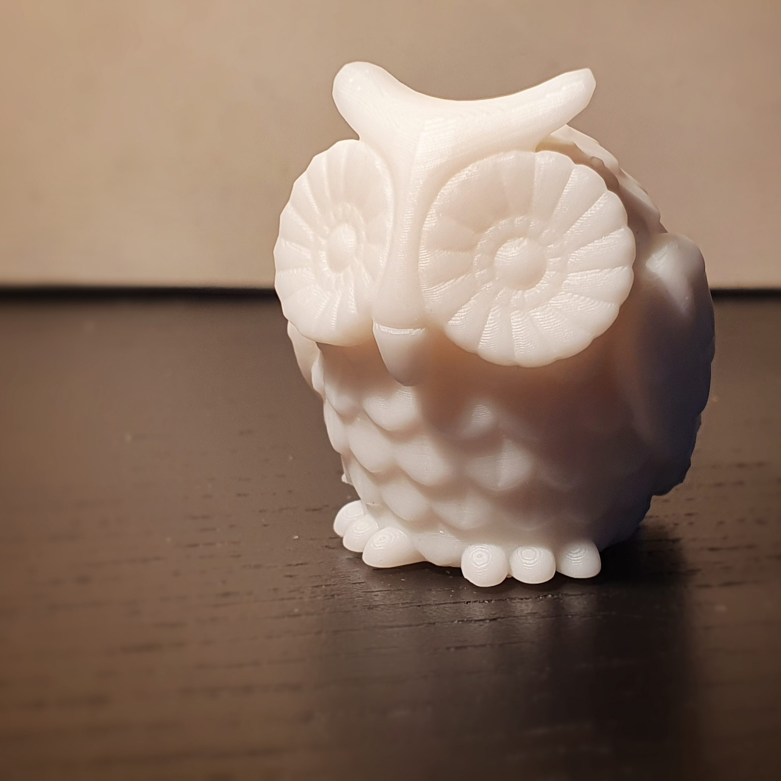 Creating a 3d Owl Print